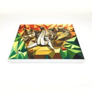 san-diego-canvas-print02
